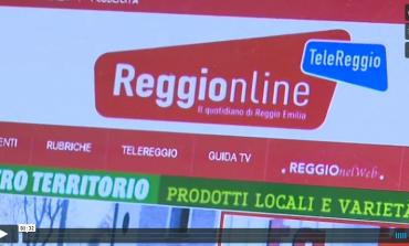 Record di visite per il nuovo Reggionline